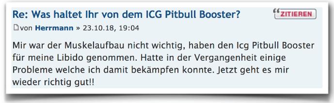 Icg Pitbull Erfahrungsbericht