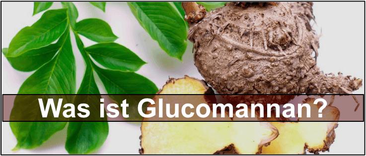 Glucomannan Pflanze