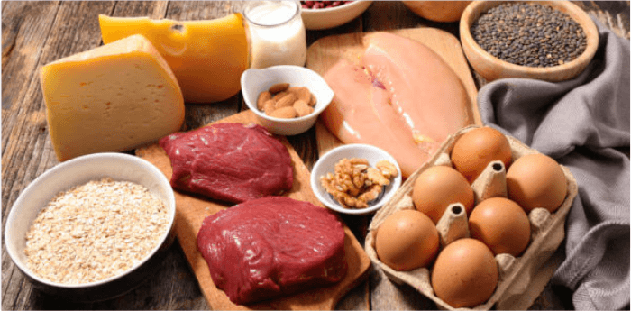 tierische Proteine