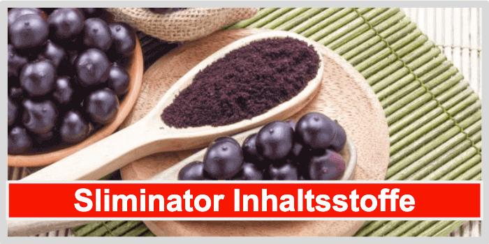 Sliminator Inhaltsstoffe