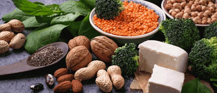 Teller richtif aufbauen Proteine Eiweiß